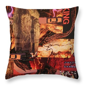 Search For The Meaning Throw Pillow
