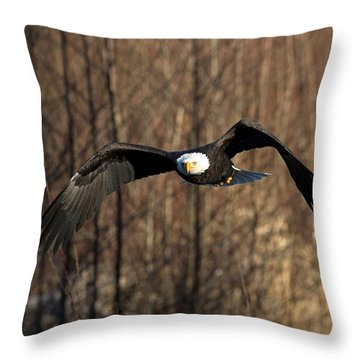 Search Mode Throw Pillow