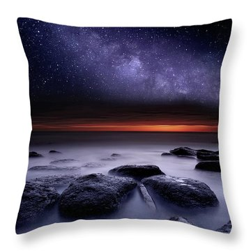 Search Of Meaning Throw Pillow by Jorge Maia