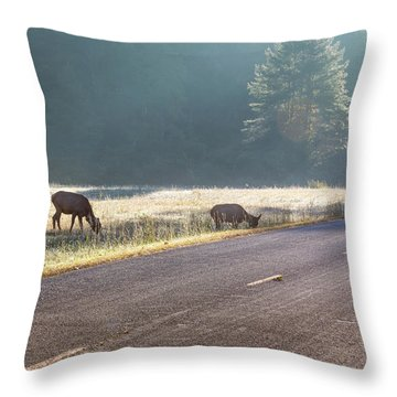 Searching For Greener Grass Throw Pillow