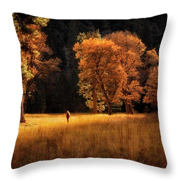 Searching For Light Throw Pillow by Nicki Frates