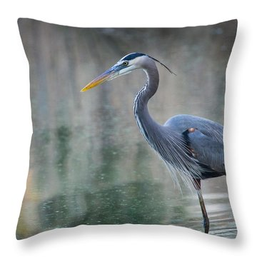 Throw Pillow featuring the photograph Searching For Lunch by Julie Andel