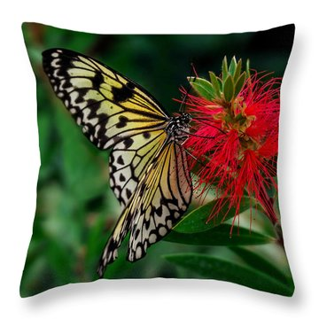 Searching For Nectar Throw Pillow
