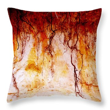 Searching Throw Pillow by Holly Kempe