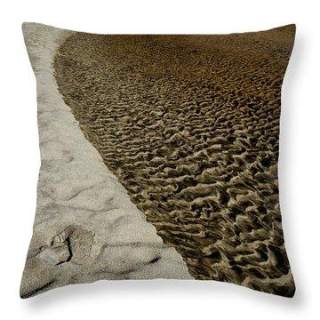 Seascape's Secret Path Throw Pillow