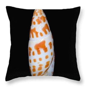 Seashell In Fishnet Throw Pillow by Bill Brennan - Printscapes