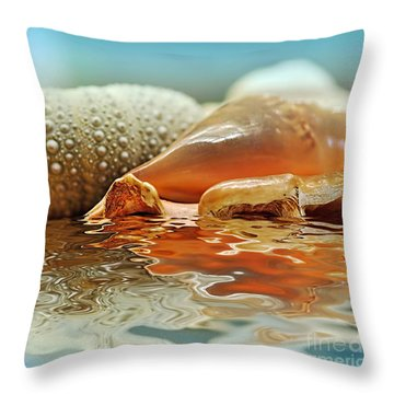 Seashell Reflections On Water Throw Pillow by Kaye Menner