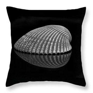 Seashell Study Throw Pillow