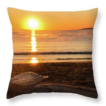 Throw Pillow featuring the photograph Seashell Sunrise by Kirkodd Photography Of New England
