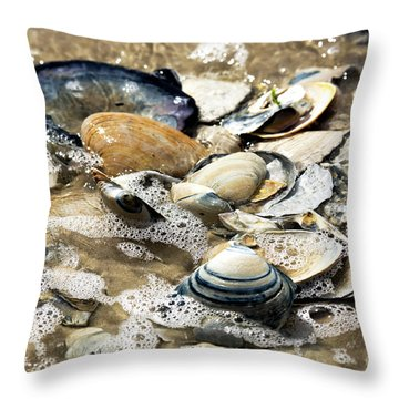 Throw Pillow featuring the photograph Seashells In The Ocean by John Rizzuto
