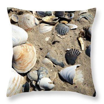 Throw Pillow featuring the photograph Seashells by John Rizzuto