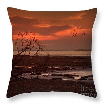 Seashore At Dawn Throw Pillow