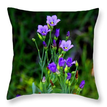 Seaside Gentian Wildflower  Throw Pillow