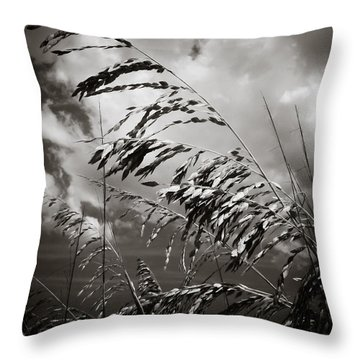Seaside Throw Pillow by Jessica Brawley