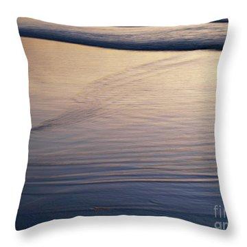 Seasideoregon04 Throw Pillow
