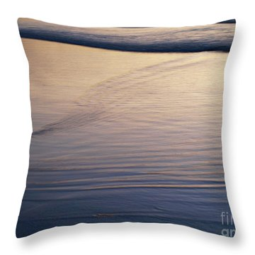 Seasideoregon04 Throw Pillow
