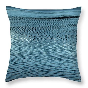 Seasideoregon03 Throw Pillow