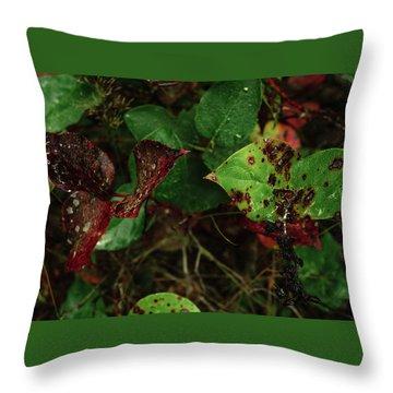 Season Color Throw Pillow