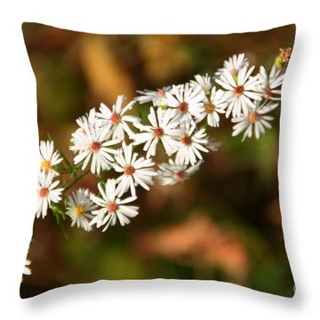 Season Delights Throw Pillow