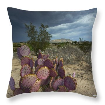 Season Of The Storm Throw Pillow by Sue Cullumber