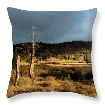 Season Of The Witch Throw Pillow