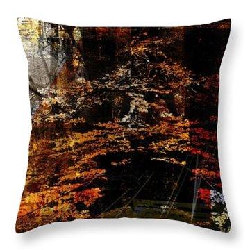 Seasons.. Throw Pillow