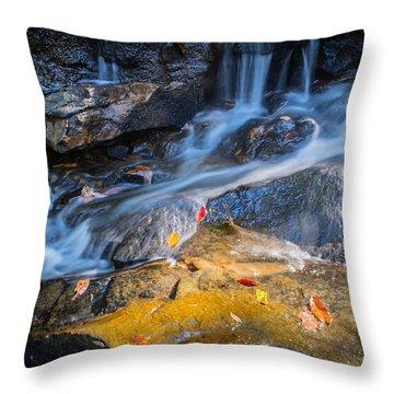 Seasons Collide Throw Pillow