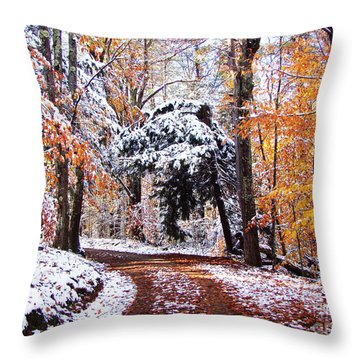 Seasons Cross Throw Pillow