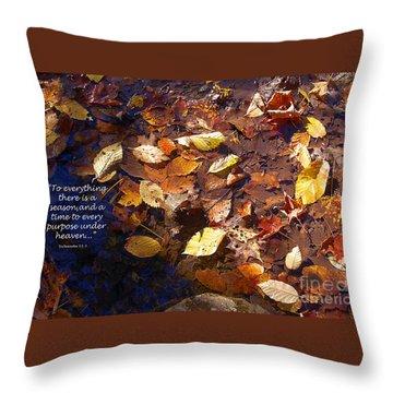 Seasons Throw Pillow by Diane E Berry