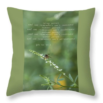 Seasons Throw Pillow by Diane Giurco