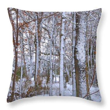 Season's First Snow Throw Pillow