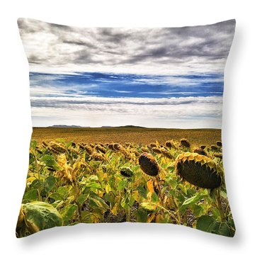 Seasons In The Sun Throw Pillow