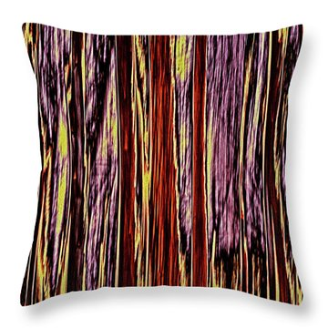 Throw Pillow featuring the photograph Seasons by Tony Beck