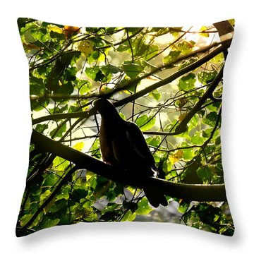 Throw Pillow featuring the photograph Seasons Will Change by Bernd Hau