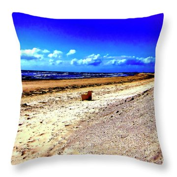 Throw Pillow featuring the photograph Seat For One by Douglas Barnard