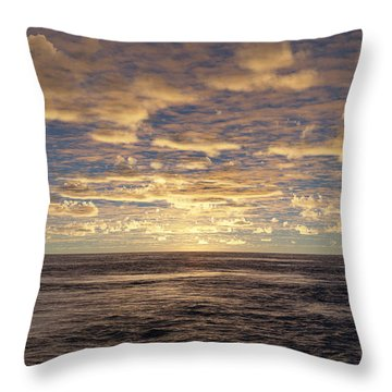 Throw Pillow featuring the photograph Seaview by Mark Greenberg