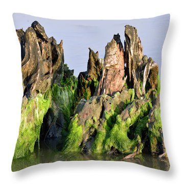 Seaweed-covered Beach Stump Throw Pillow by Bruce Gourley