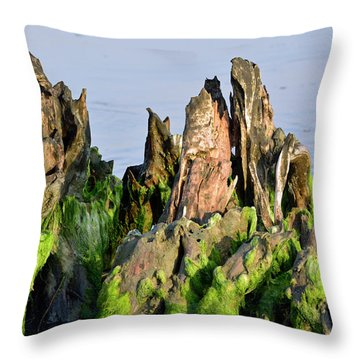 Seaweed-covered Beach Stump Mountain Range Throw Pillow by Bruce Gourley