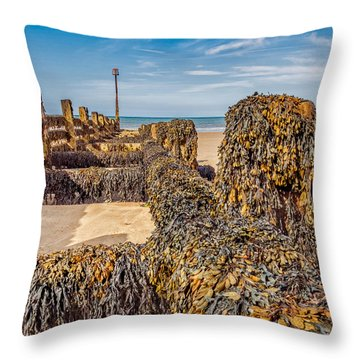 Seaweed Covered Throw Pillow