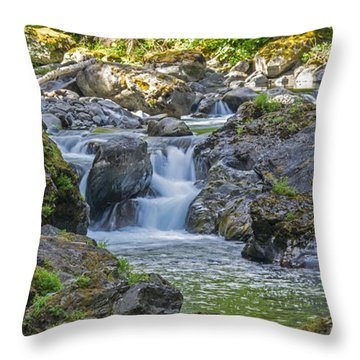 Secluded Inspiration Throw Pillow