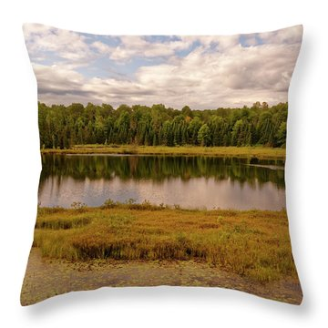 Secluded Lake Throw Pillow