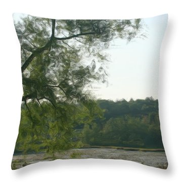 Secluded Marsh Throw Pillow