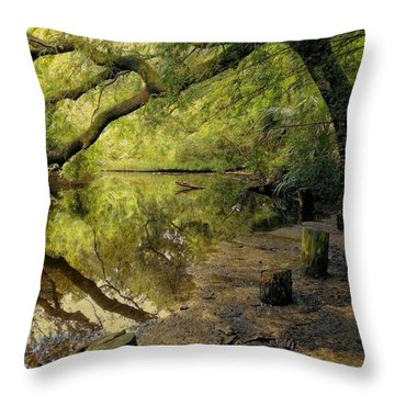 Secluded Sanctuary Throw Pillow