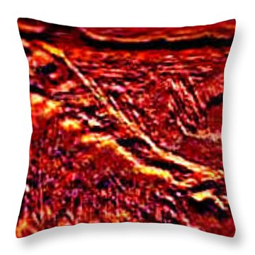 Seclusively Red Is The South Rim Throw Pillow by Brenda L Spencer