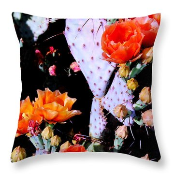 Second Day Color Throw Pillow by M Diane Bonaparte