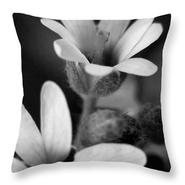 Second Look Throw Pillow