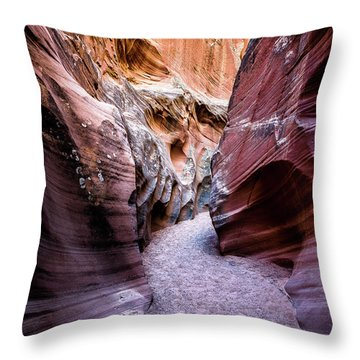 Secret Canyon 1 Throw Pillow