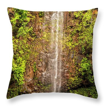 Secret Falls Throw Pillow by Brian Harig