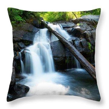 Secret Falls By Brad Scott Throw Pillow