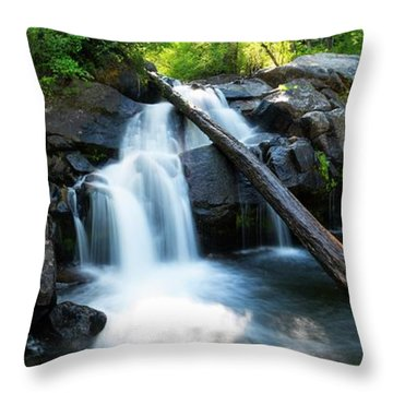 Secret Falls By Brad Scott Throw Pillow